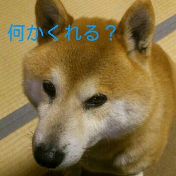 2012-04-29_00.55.09.jpg